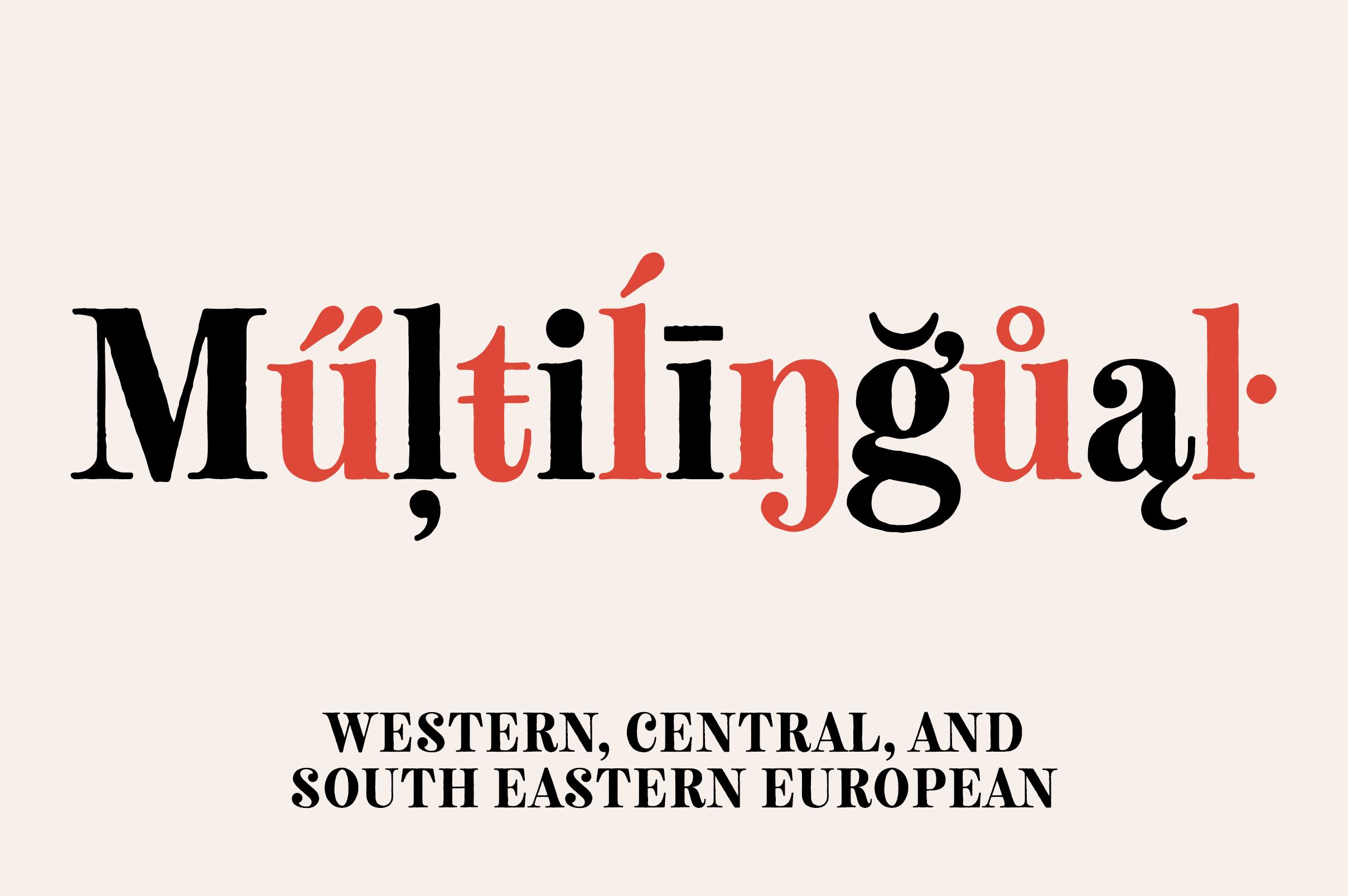 Neato Serif Font Family example image 13