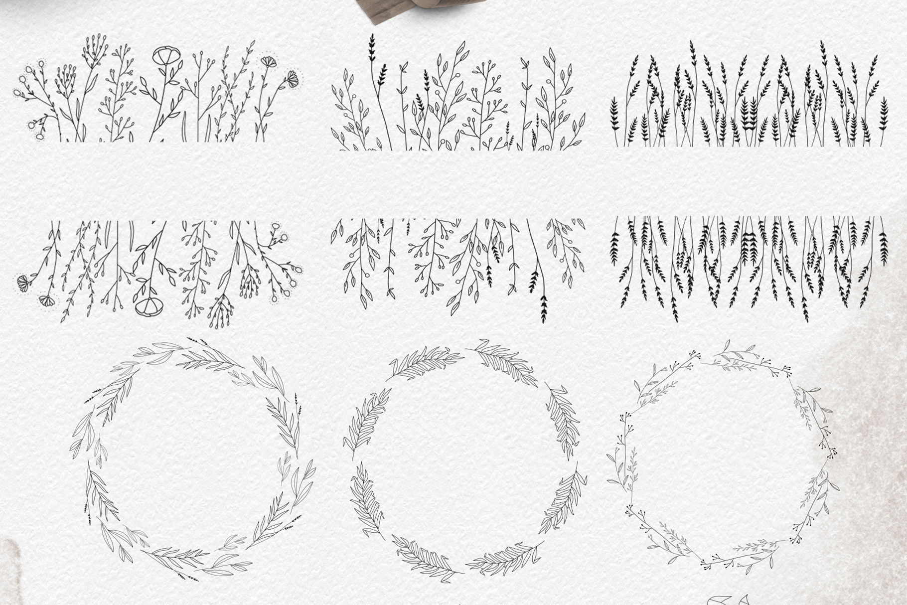 Line art botanical illustrations example image 3