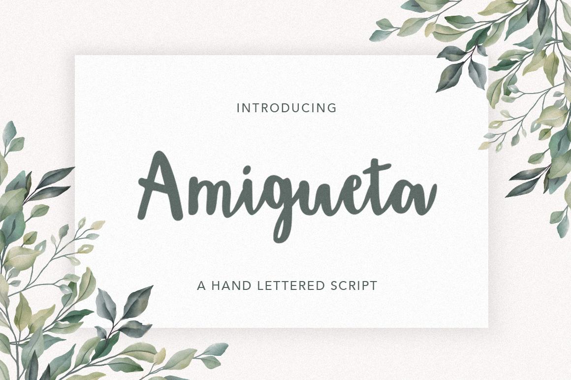 Amigueta Script example image 1