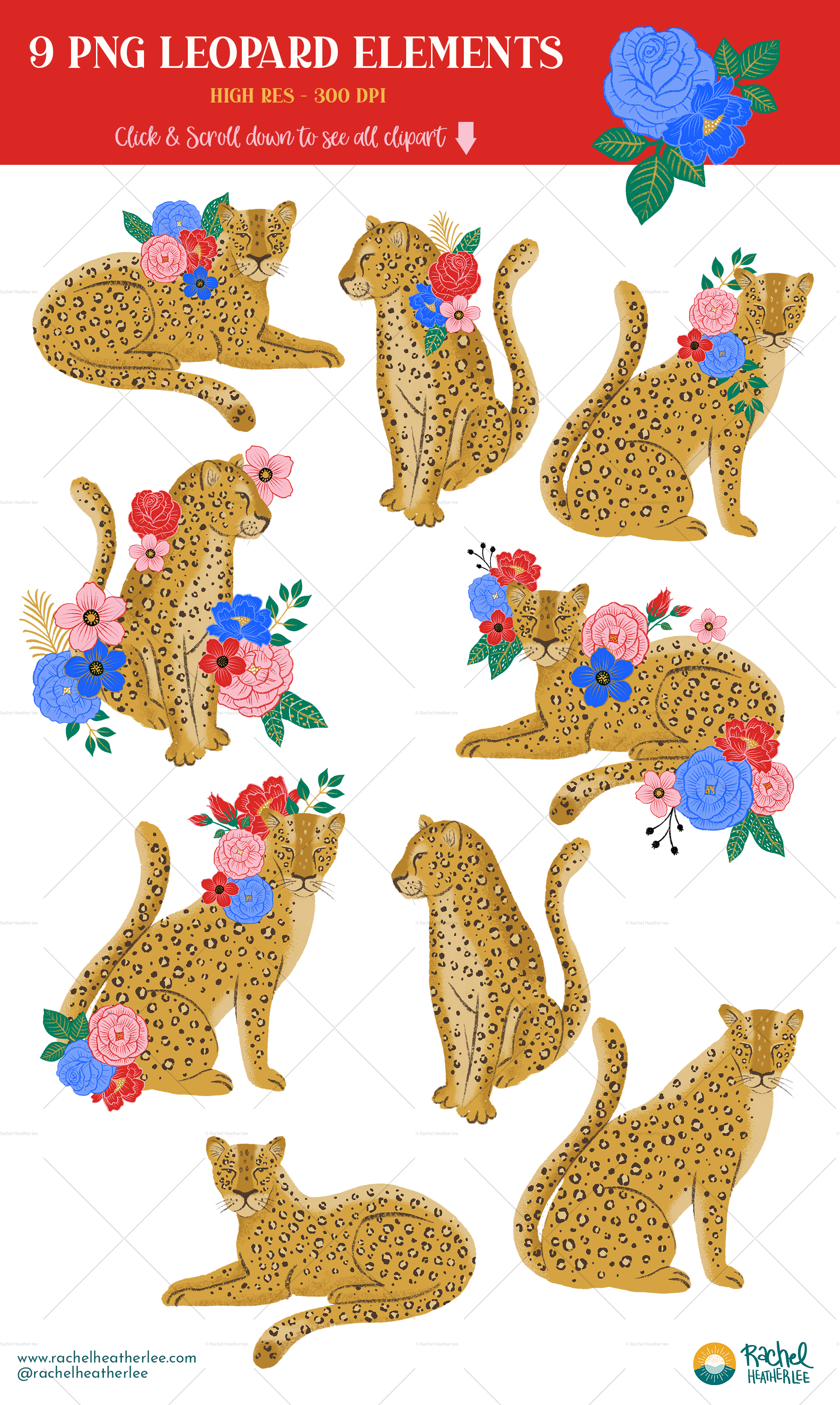 Leopard Floral Clipart & Patterns example image 4