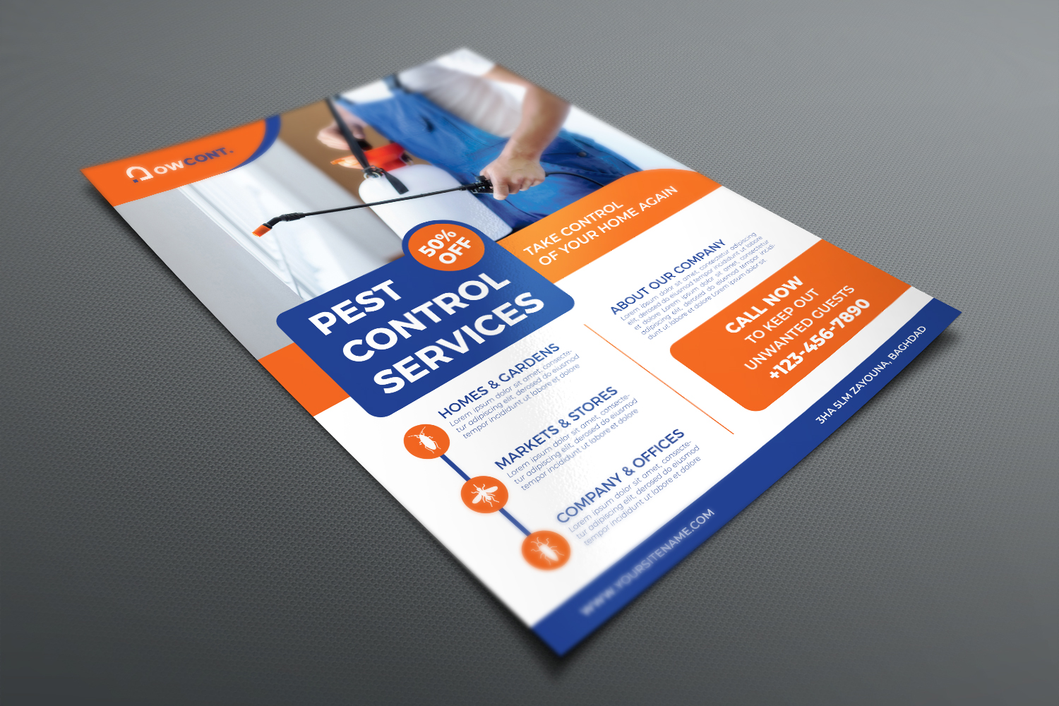 Pest Control Services Flyer Template example image 3