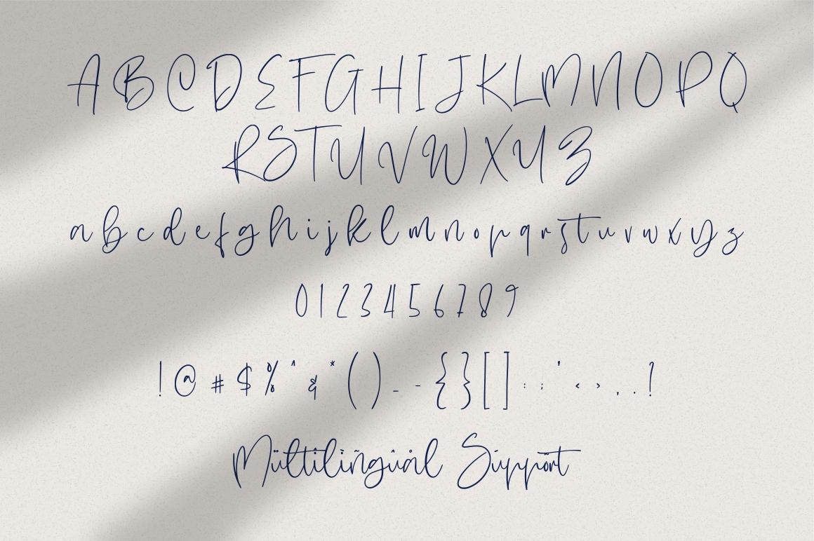 Hugesnow - Signature Font example image 6