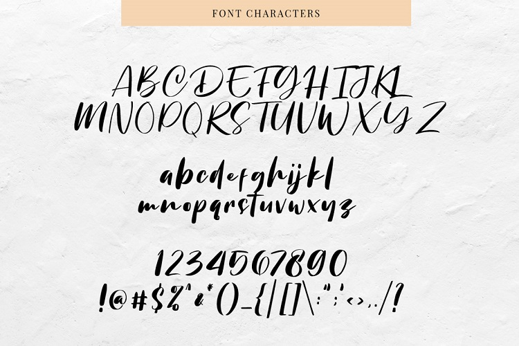 Chellyne - Modern Script Font example image 7