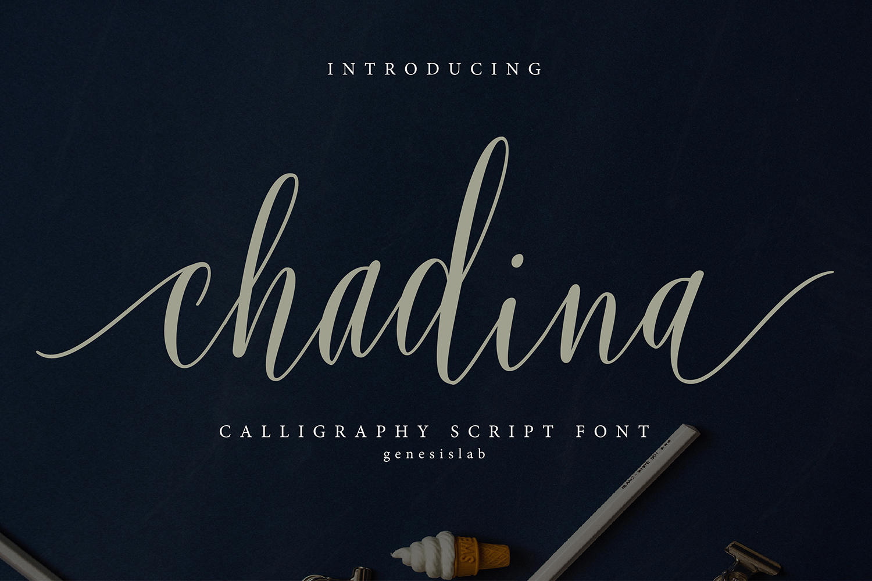 Chadina Script example image 1