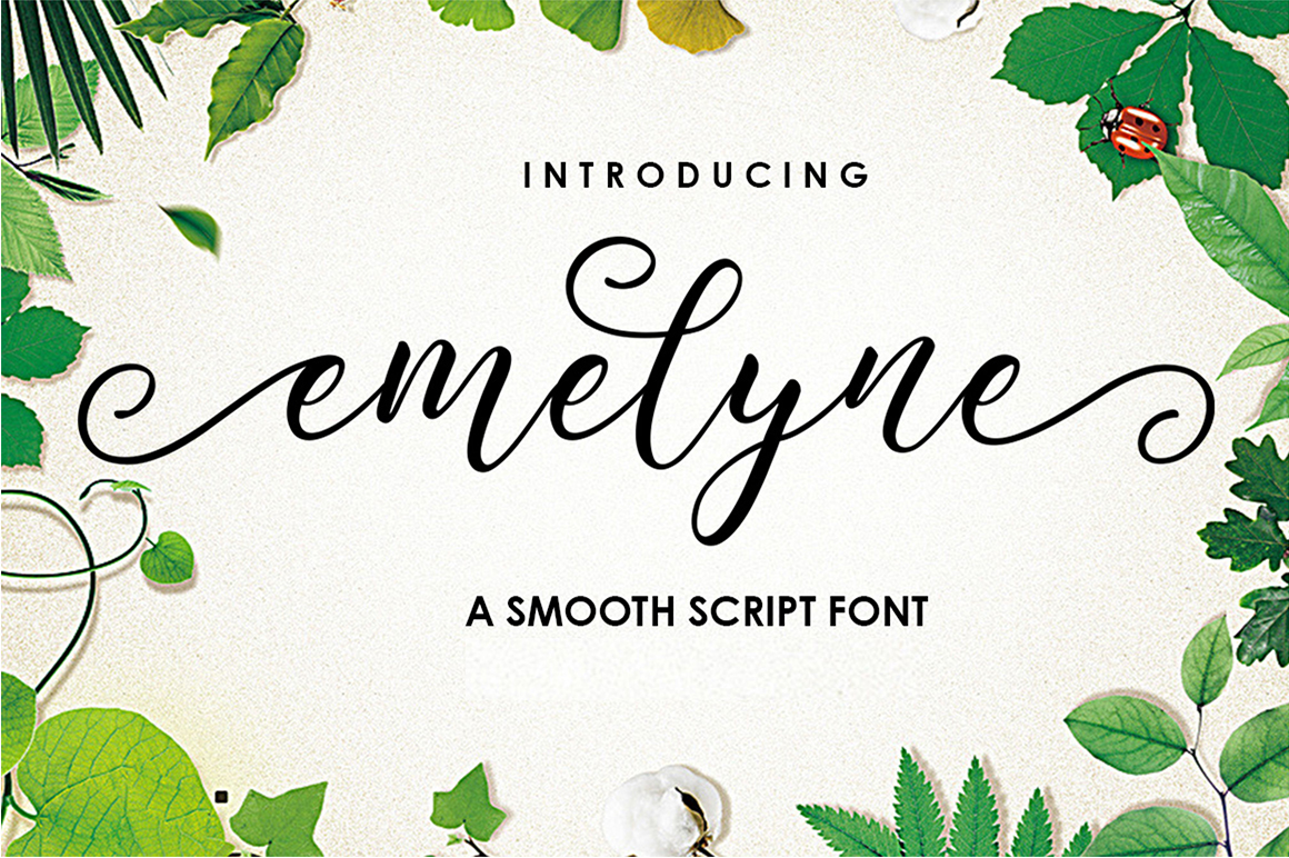 The Authentic Script Font Bundle example image 18