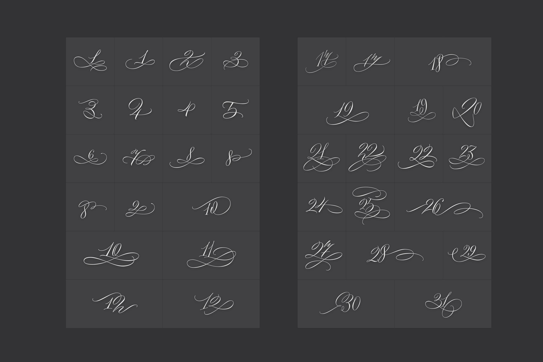 Black & White - premium quality font example image 14