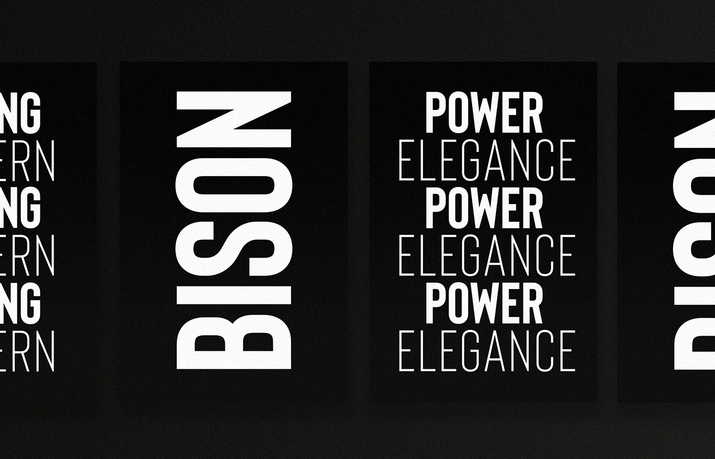 Bison - A powerful font example image 3