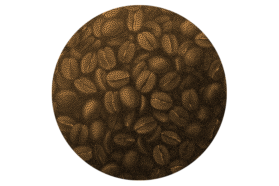 Coffee vector set. example image 2