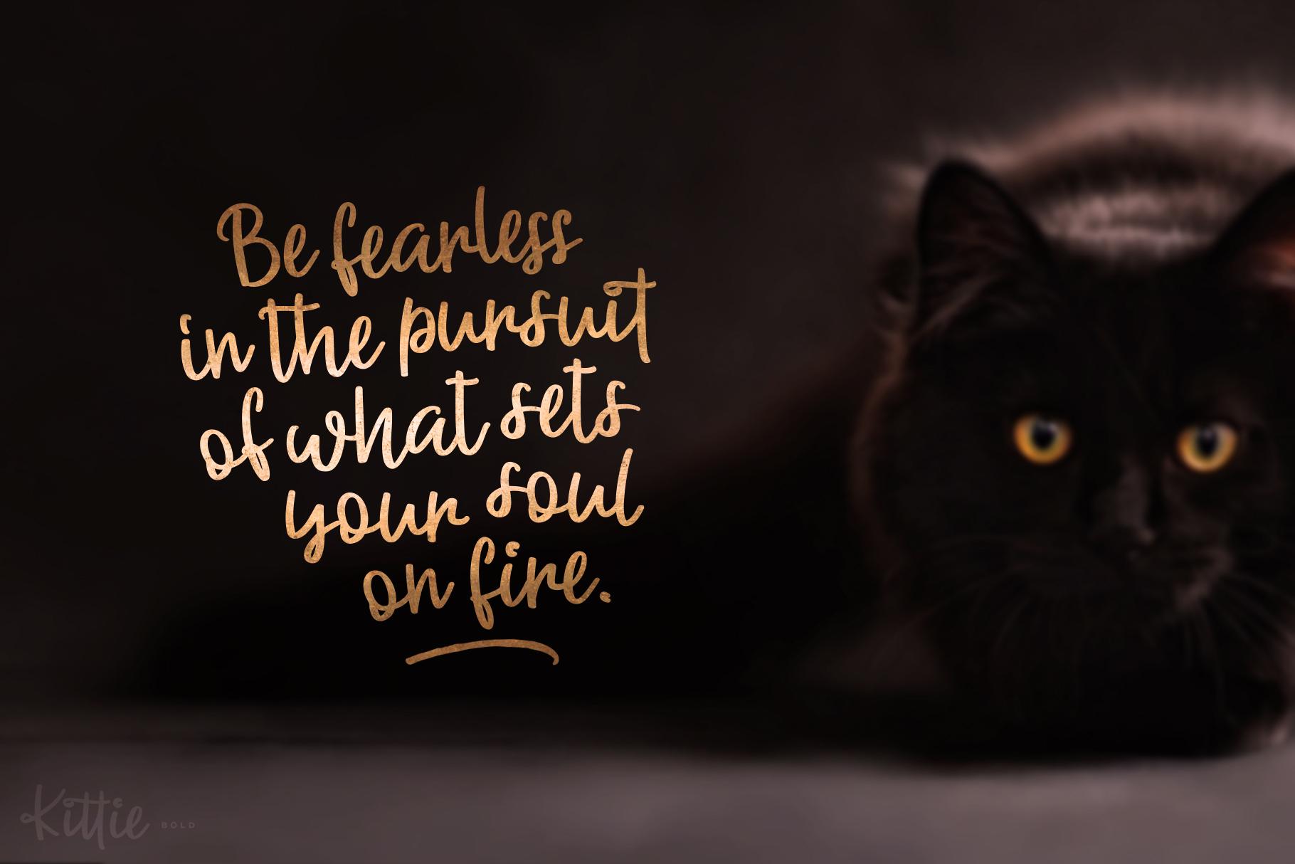 Kittie | Regular & Bold example image 7