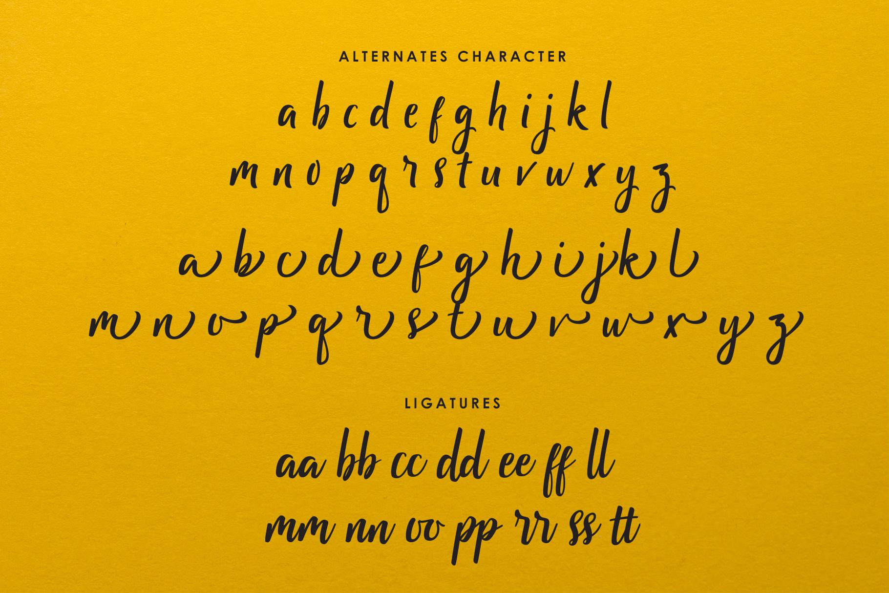 Pammela Script example image 6
