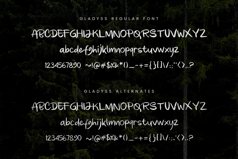 Gladyss Handwritten Font example image 7