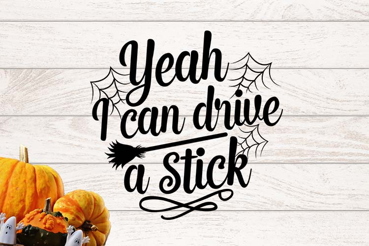 Yeah I can drive a stick SVG example image 1