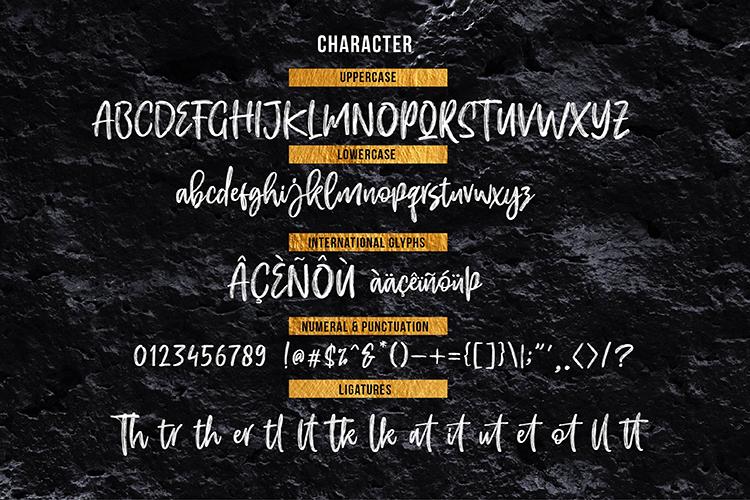 EFRISILLA - Handbrush Script example image 7