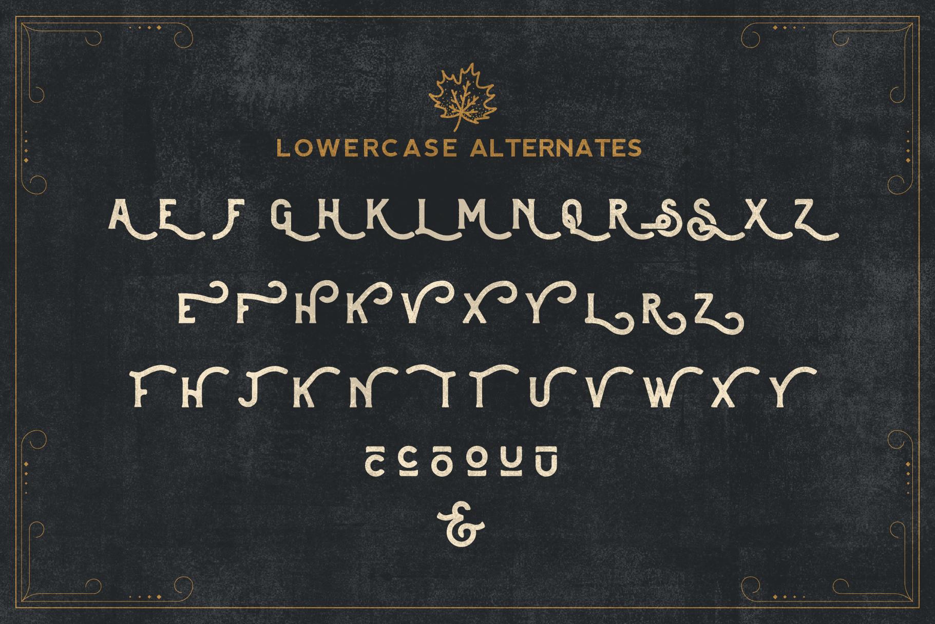 Brewski - Brewery Typeface example image 10