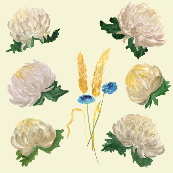 10 Watercolor Chrysantemums Clip Art example image 2