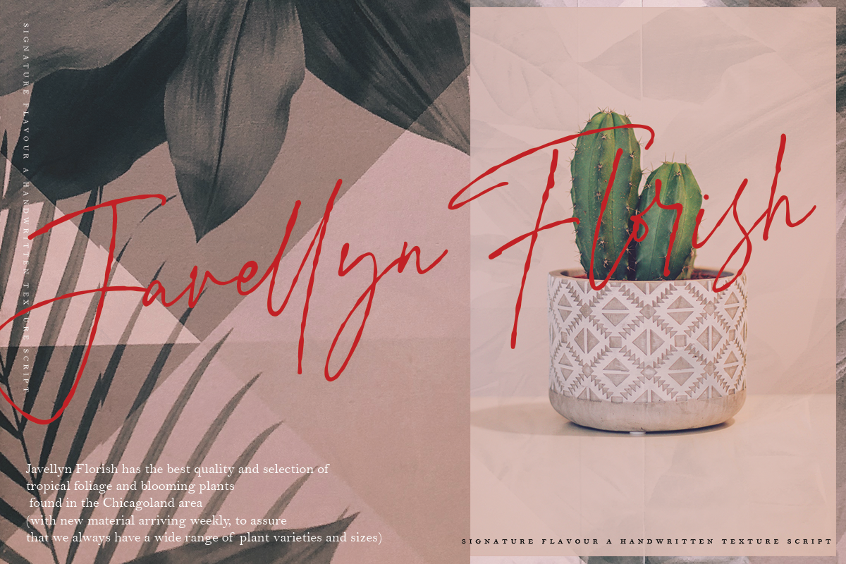 Signature Flavour | Handwritten Font example image 7