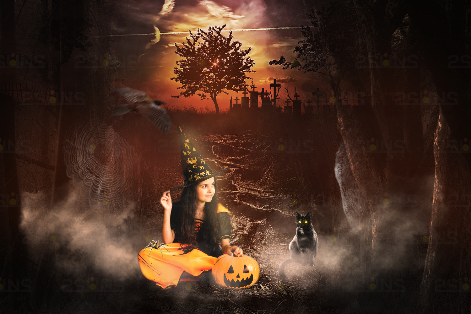 Halloween overlays, Pumpkin, Raven, Cat, Spider, Backdrop example image 2