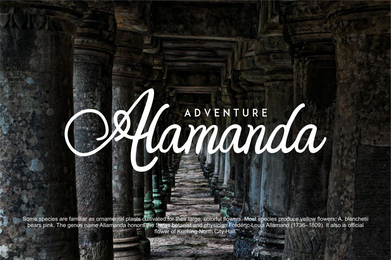 Orlandia | Beauty Font Elegant example image 4