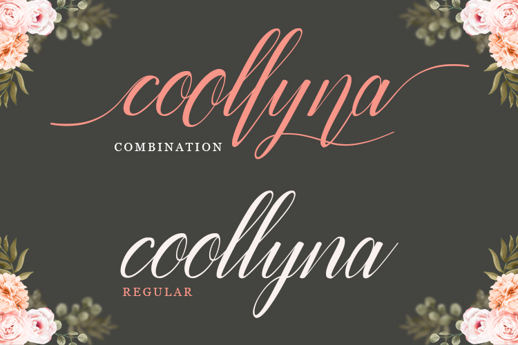 Coollyna Script |Modern Calligraphy Typeface example image 7
