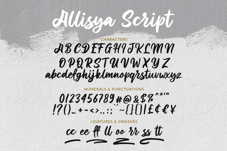 Allisya Brush Script example image 6