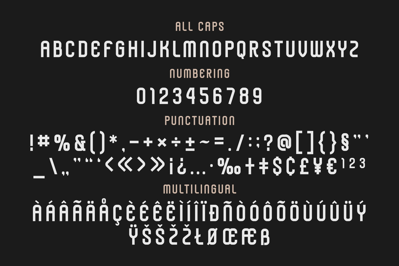 Darlon - Sport Typeface example image 5