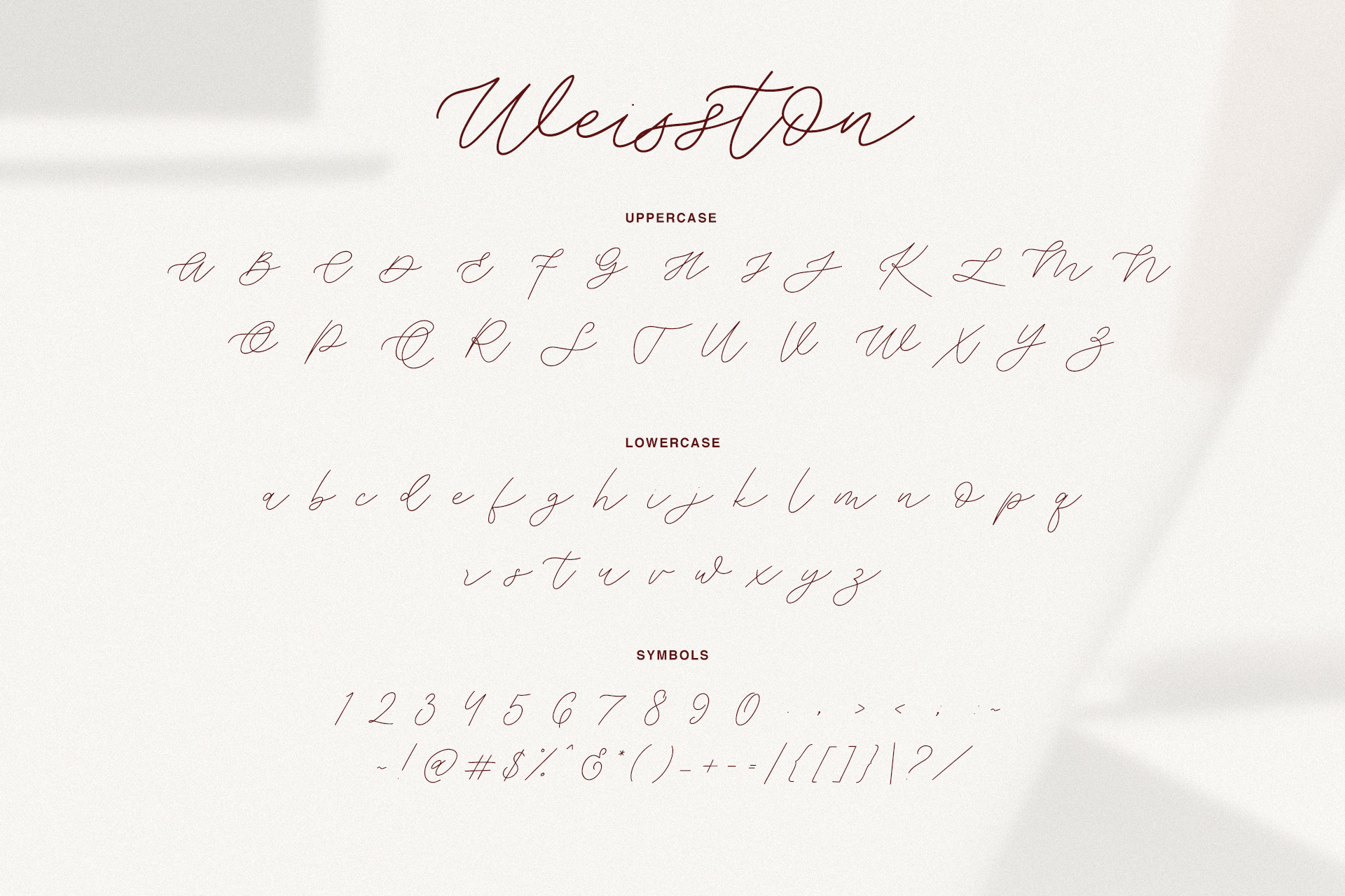 Weisston - Script Font example image 10