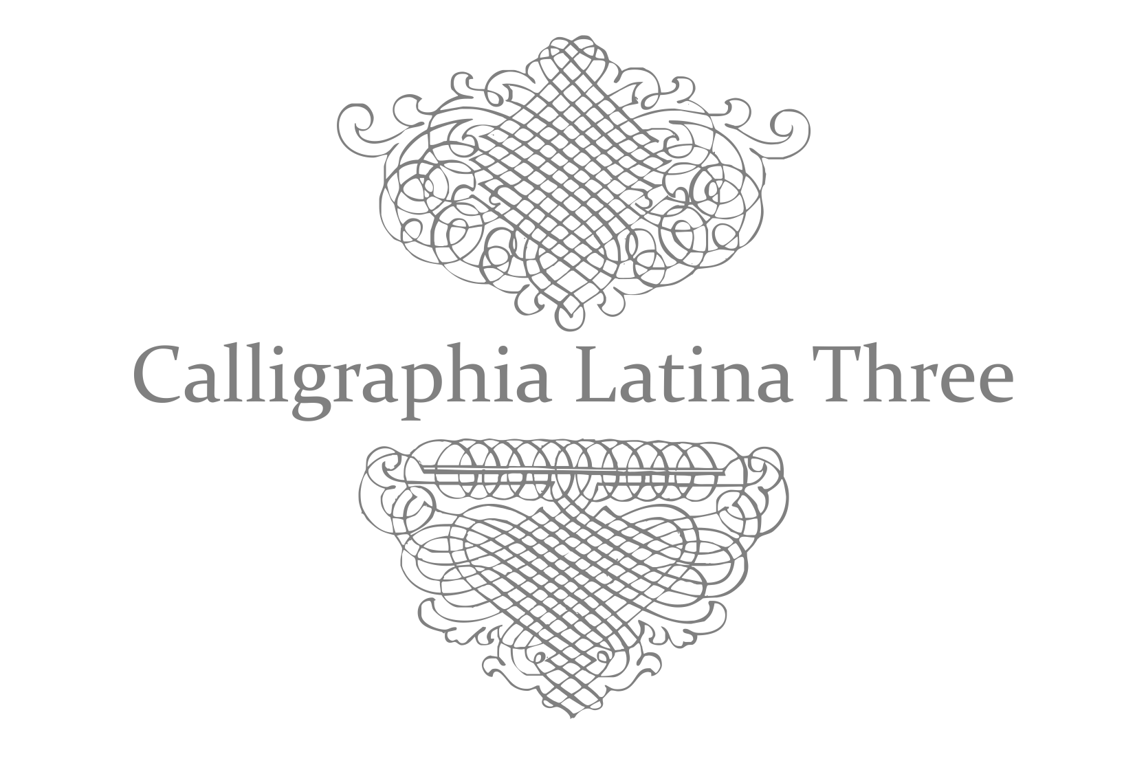 Calligraphia Latina Three example image 2