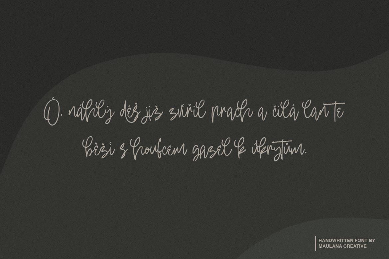 Oterdin - Handwritten Font example image 8