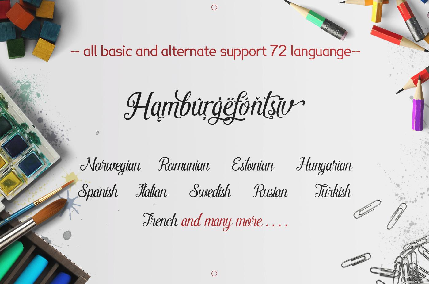 Pamega Script Font example image 5