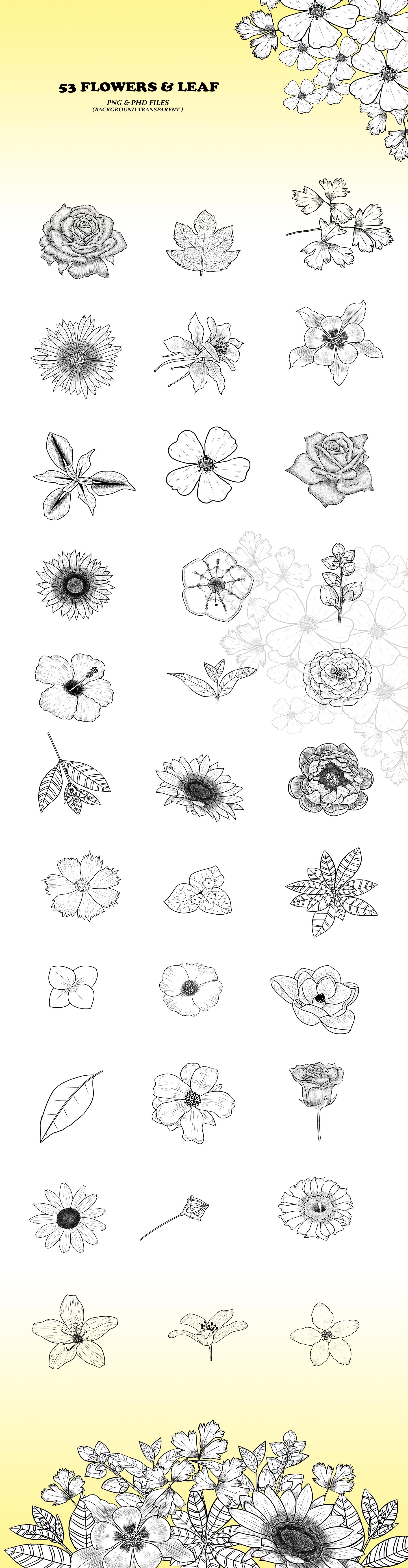 Native American Flowers Illustration example image 3