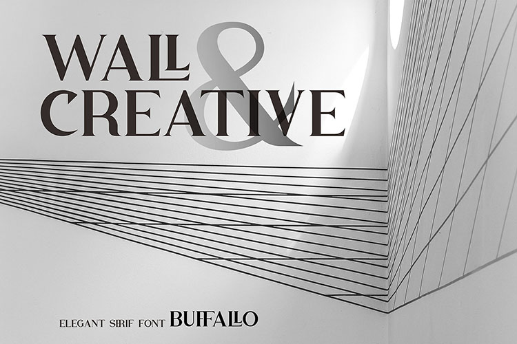 Buffallo Elegant Serif Font example image 5