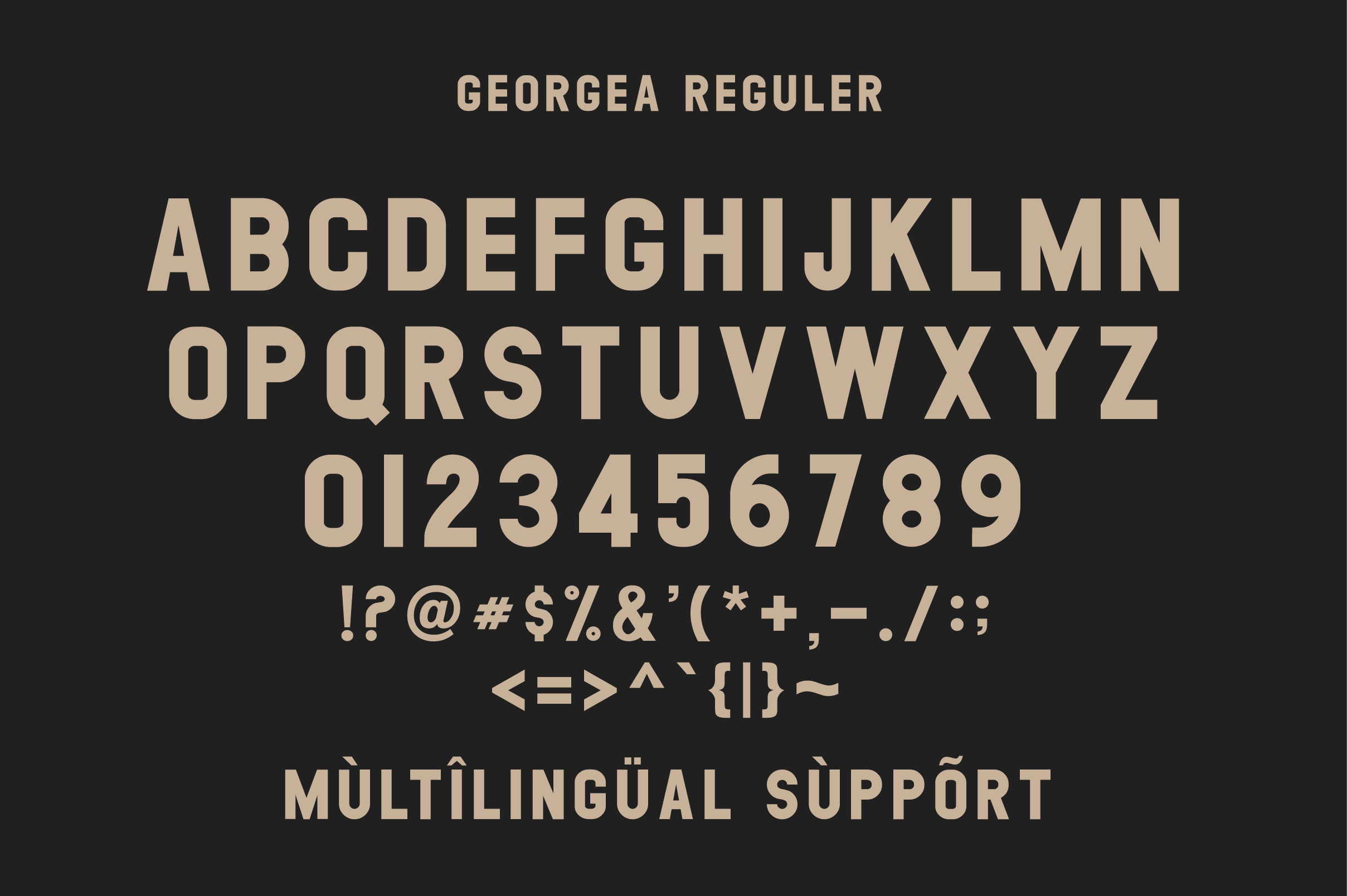 GEORGEA ALL CAPS FONT FAMILY WITH EXTRAS example image 13
