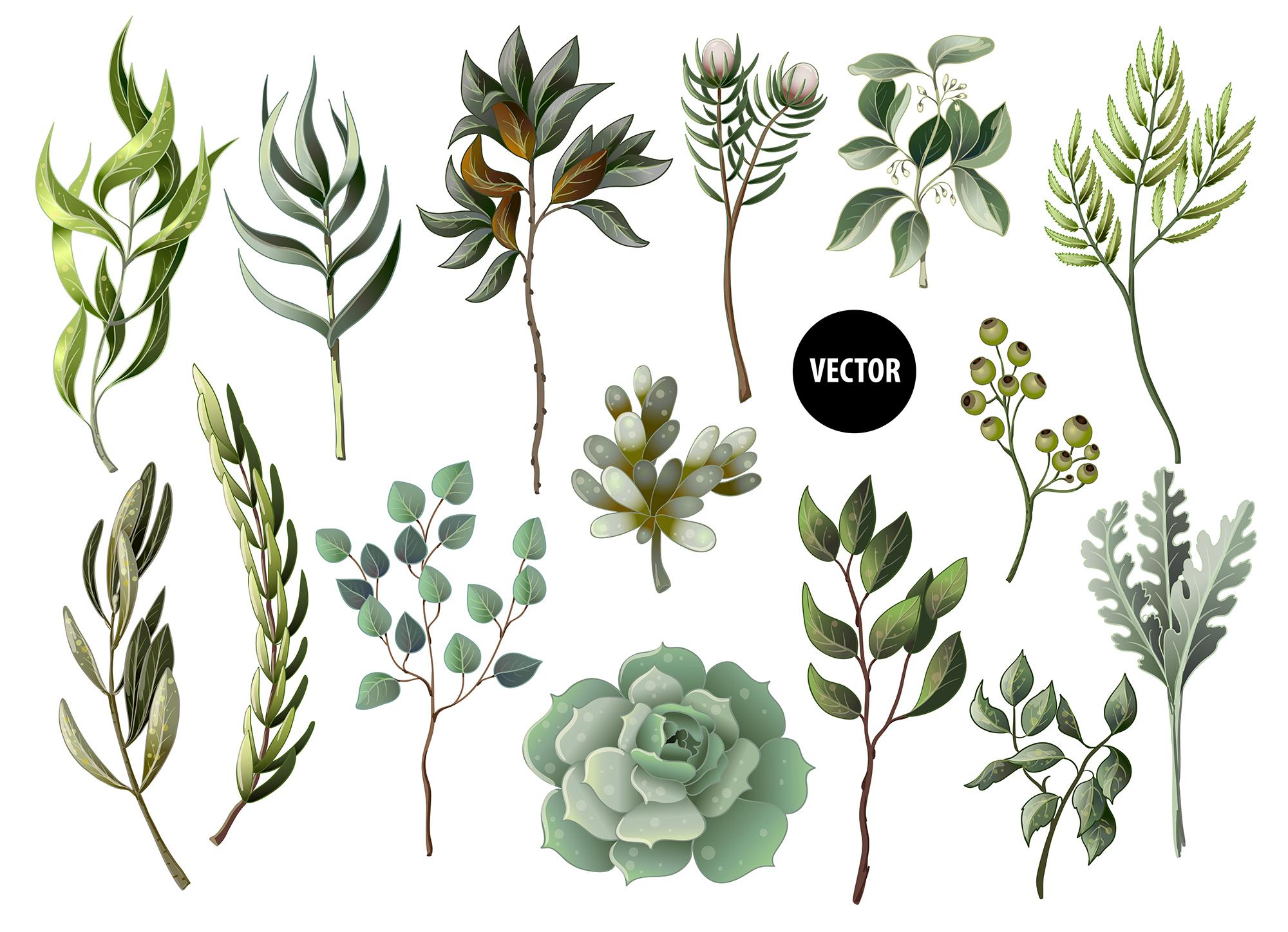Wedding greenery invitation, patterns and isolated elements example image 2