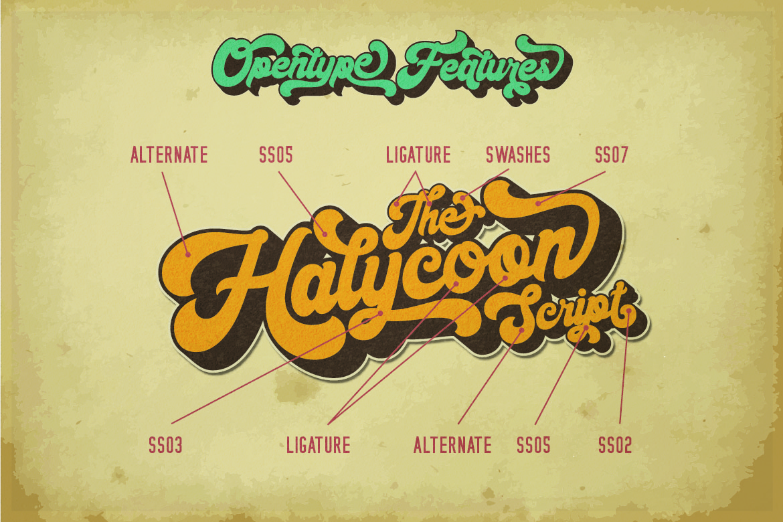 Halycoon Script example image 9