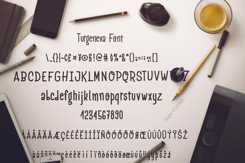Turgeneva Handdrawn Font example image 2