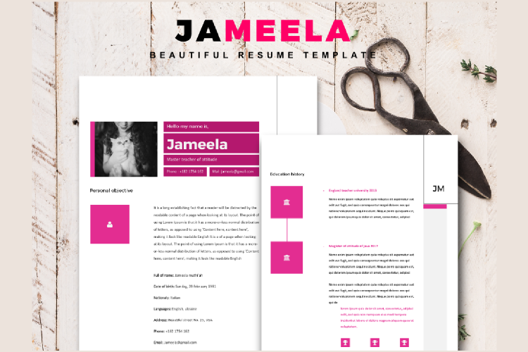 8 Sheets Resume and CV Template Modern Porfessional example image 2