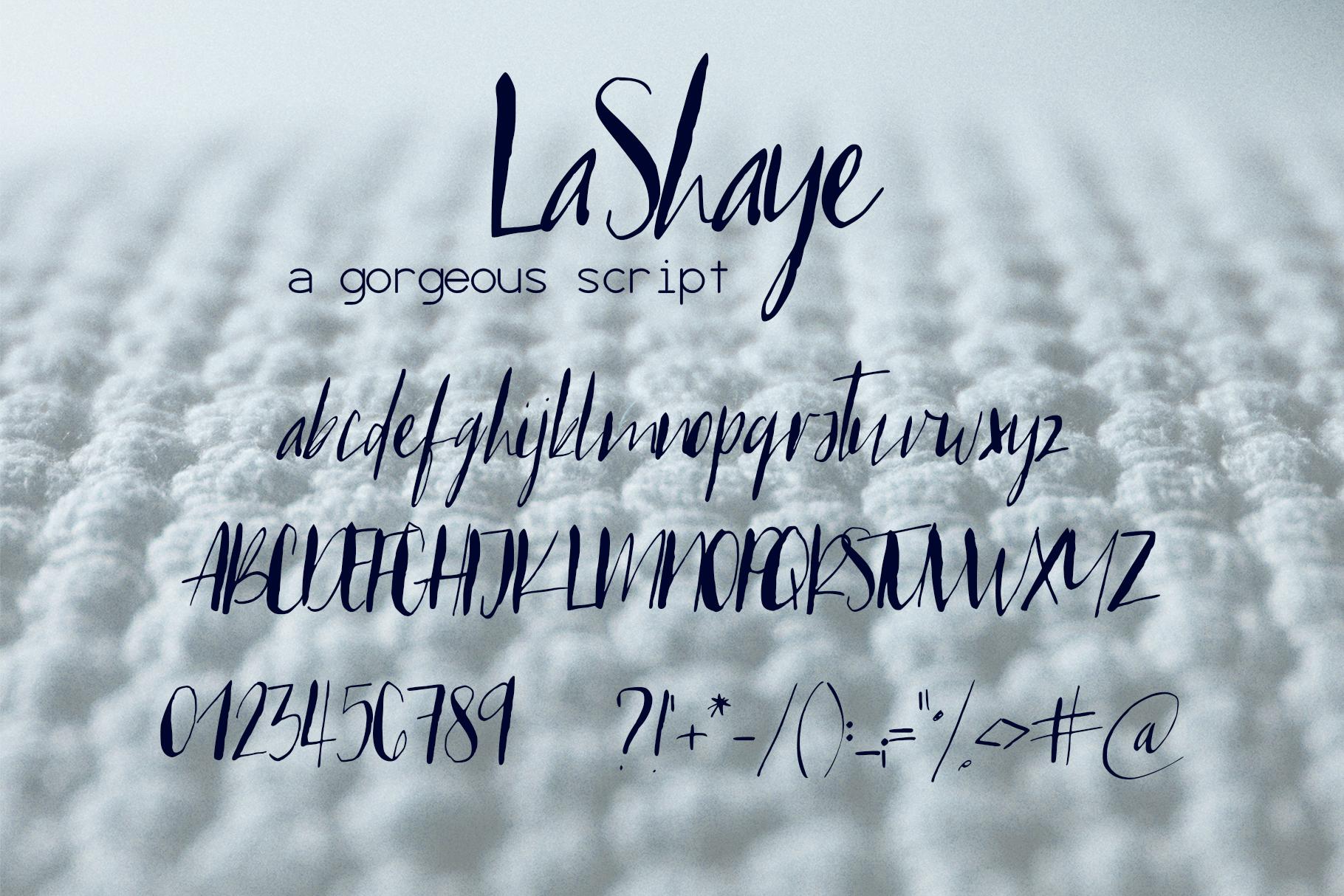 LaShaye Font example image 7
