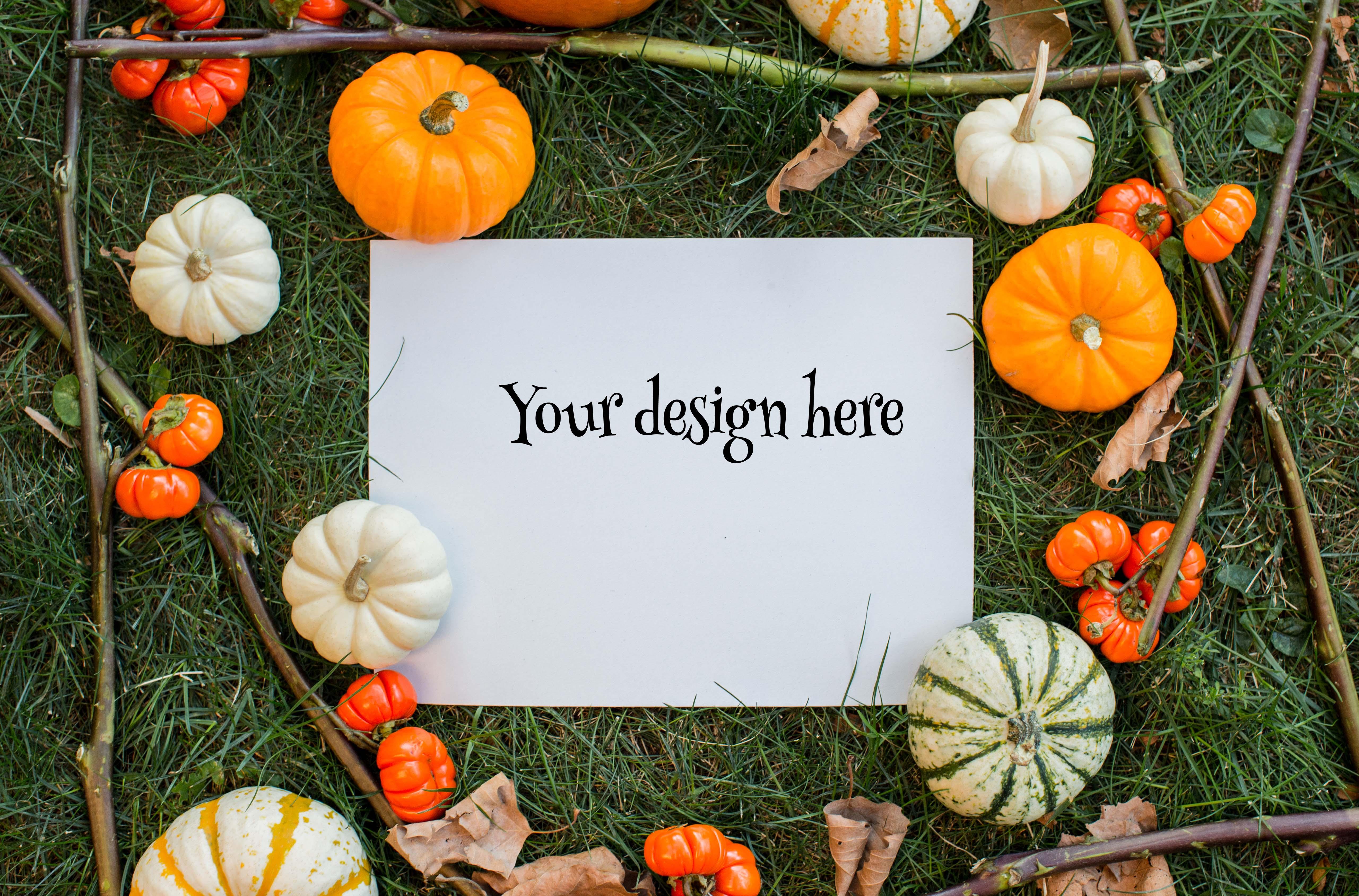 Set from 3 pumpkin mockups example image 3