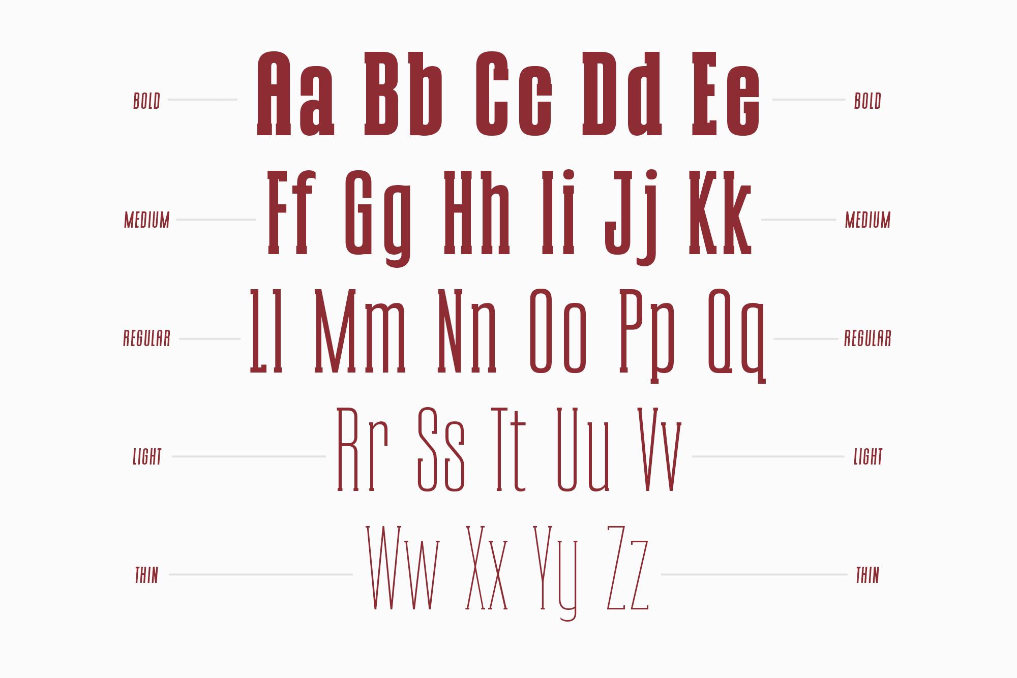 CONQUEST Sans & Slab Serif example image 9