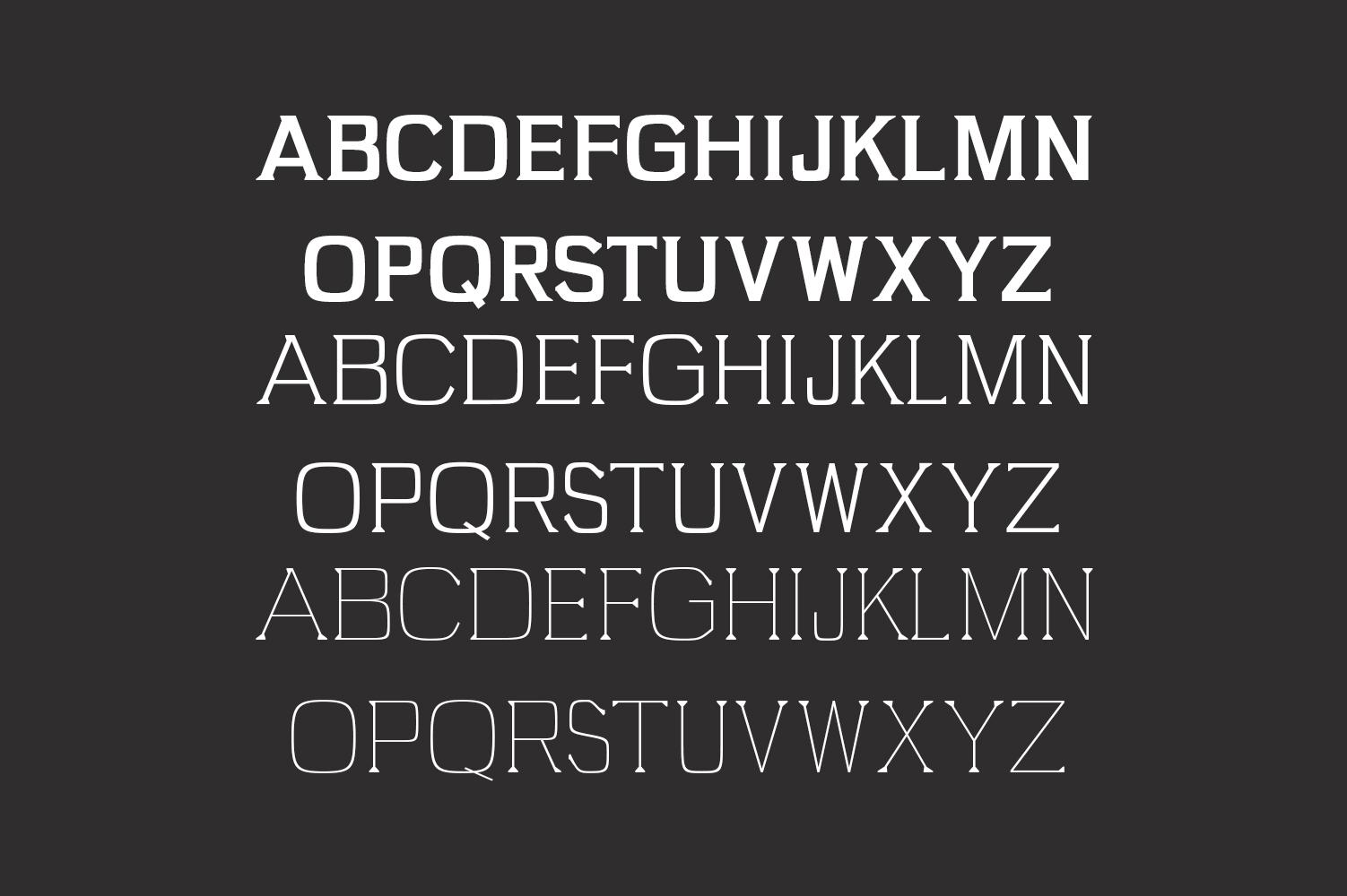 Brydon Serif Typeface example image 2
