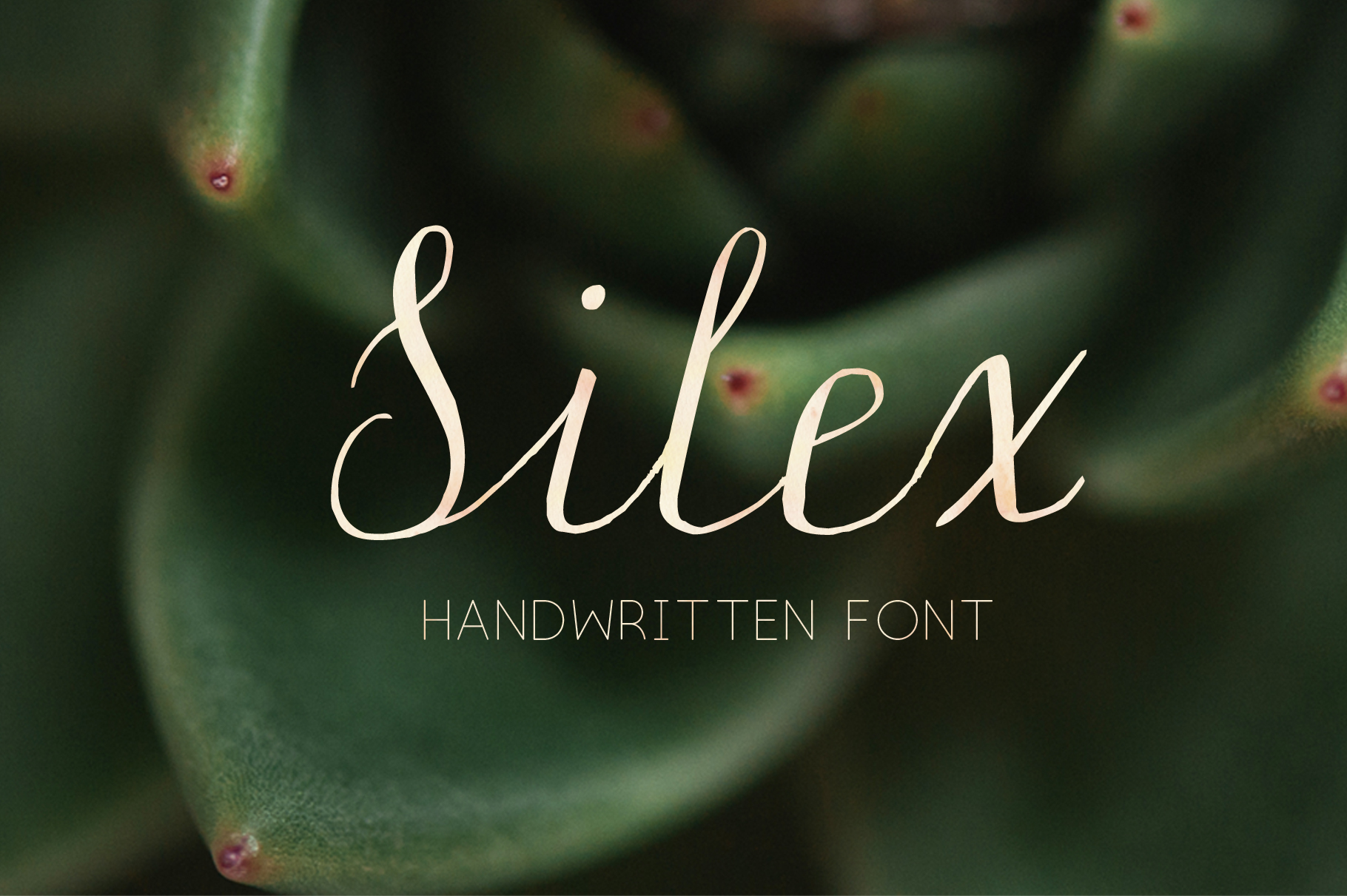 Silex. Modern calligraphy example image 1