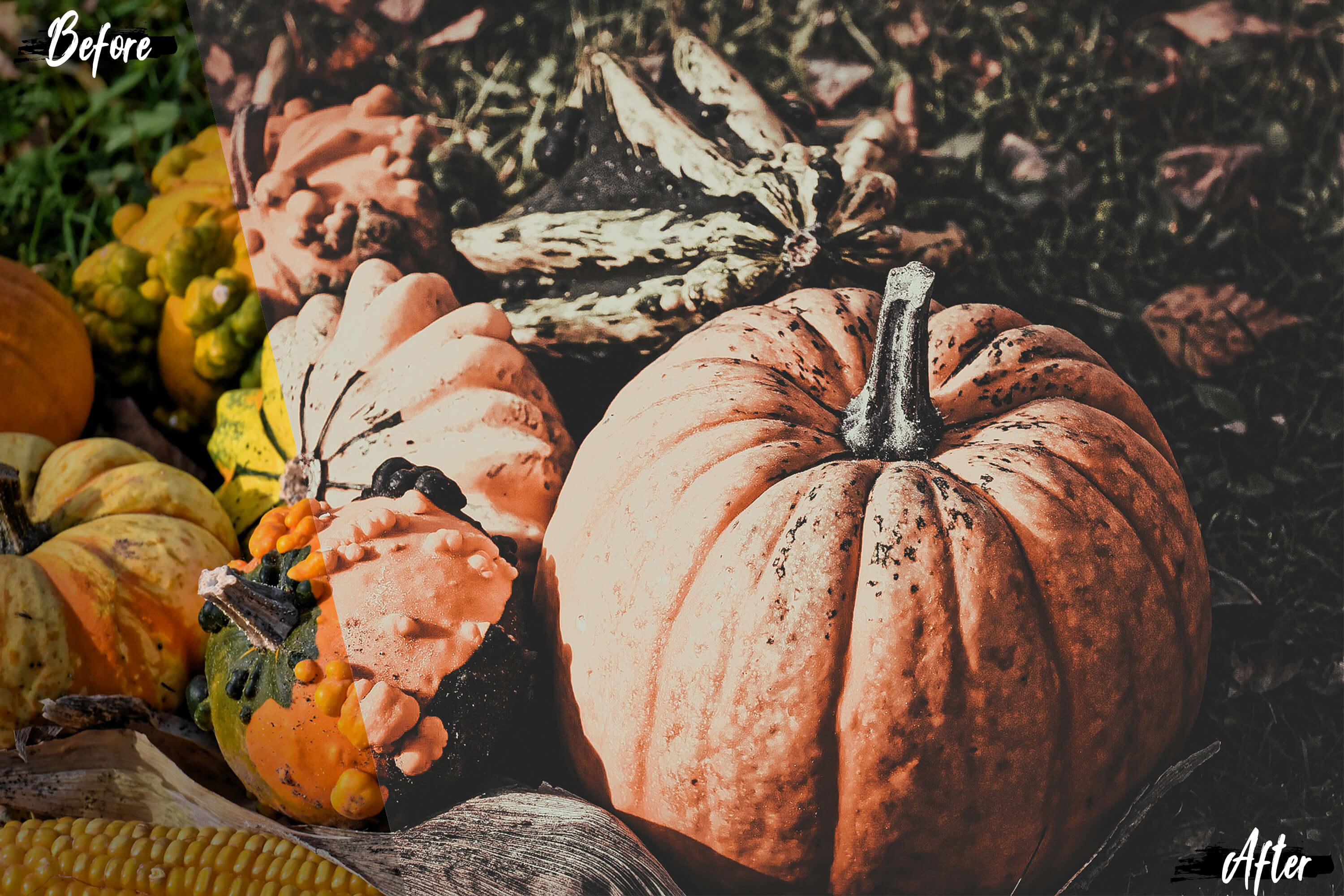 5 Dreamy Autumn Photoshop Actions, ACR and LUT presets example image 5