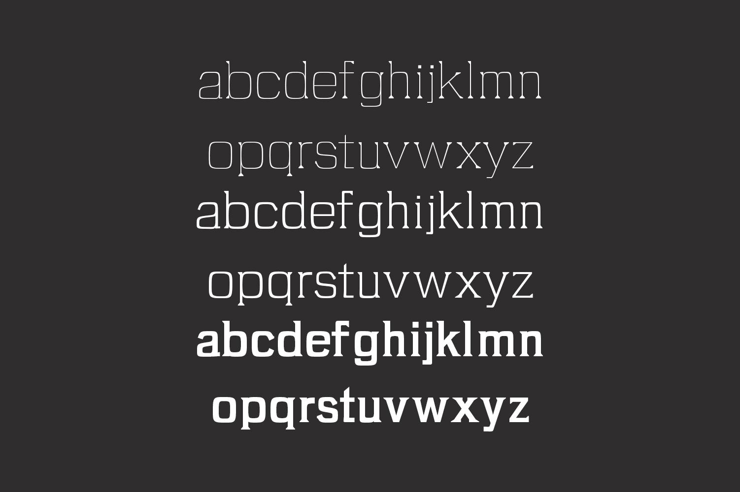 Brydon Serif Typeface example image 3