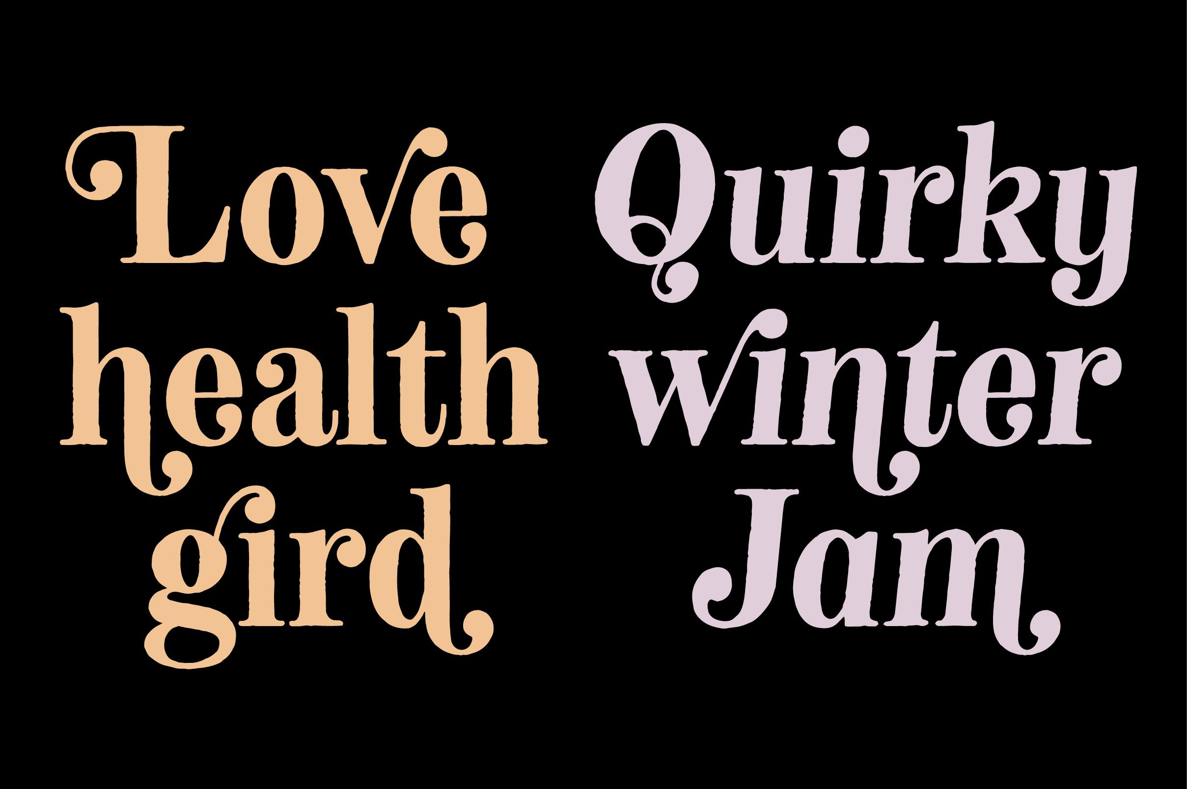 Neato Serif Font Family example image 8