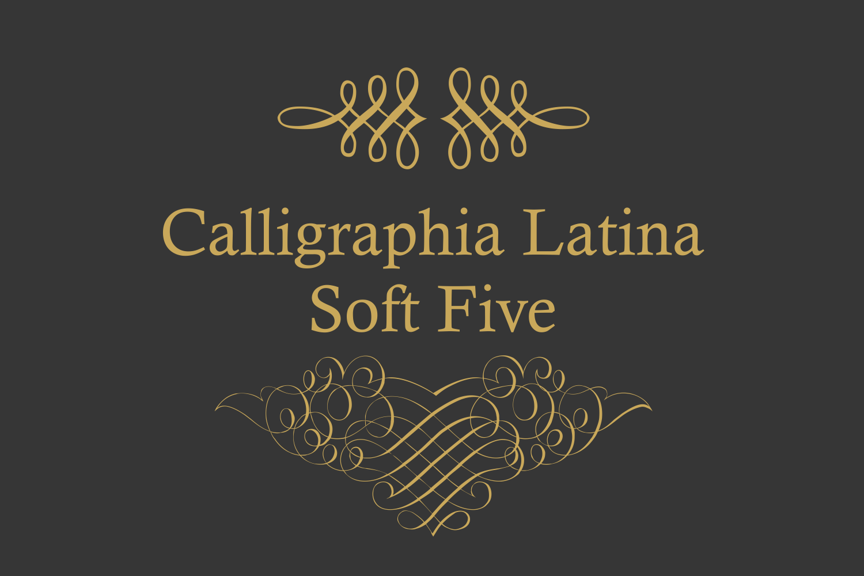 Calligraphia Latina Soft Five example image 3