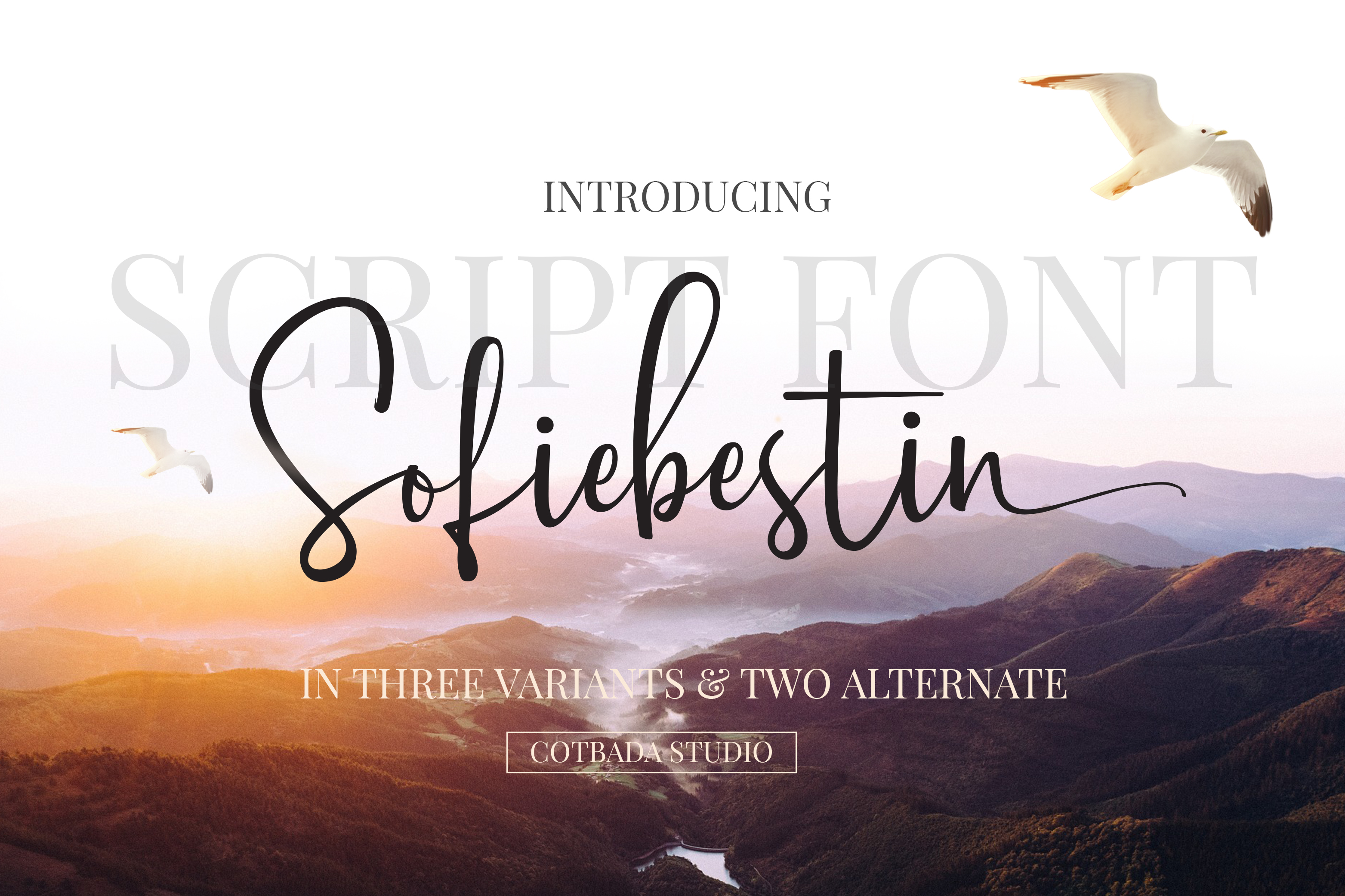 Sofiebestin Script  example image 1
