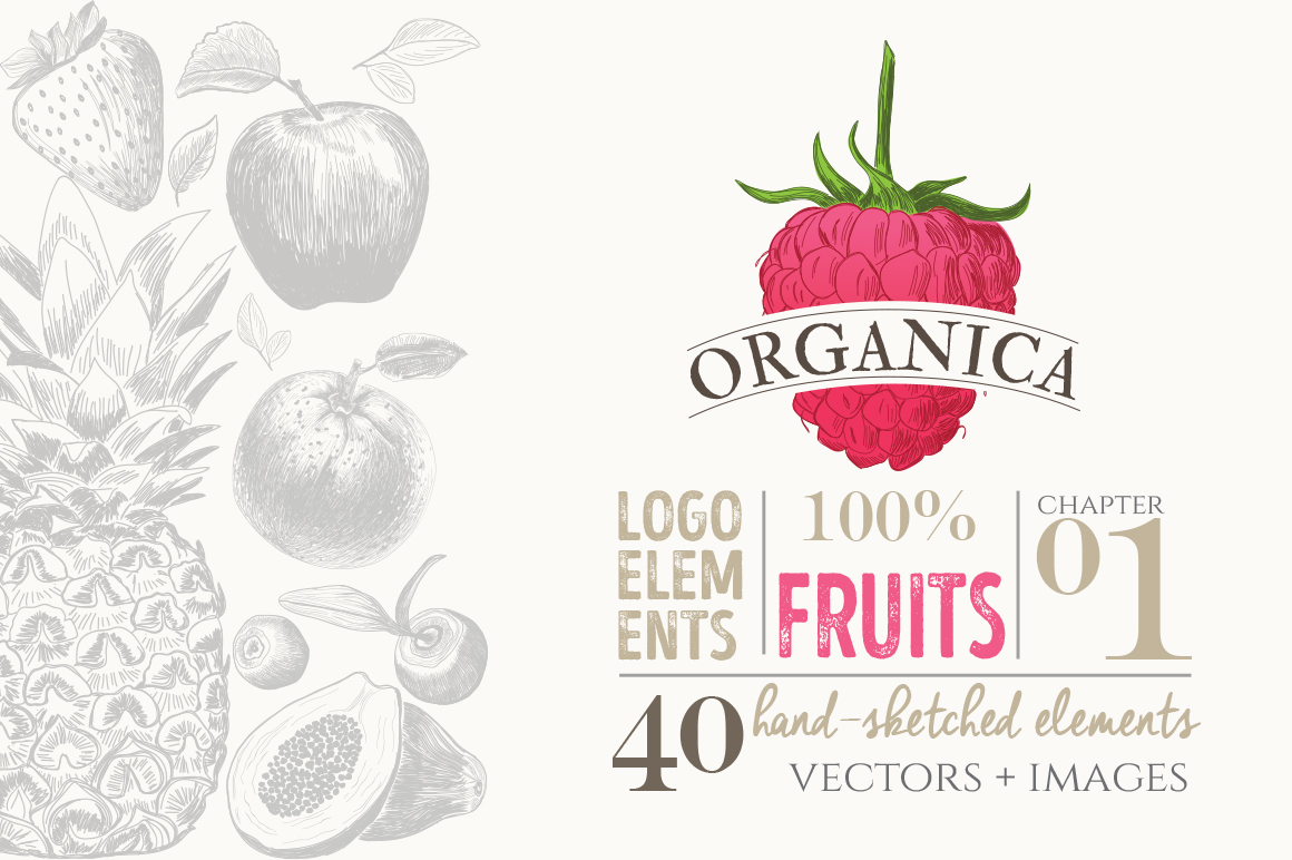 ORGANIC LOGO ELEMENTS  FRUITS example image 1