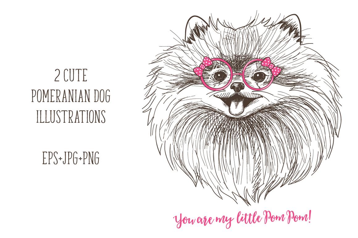 Pomeranian dogs print + bonus! example image 3