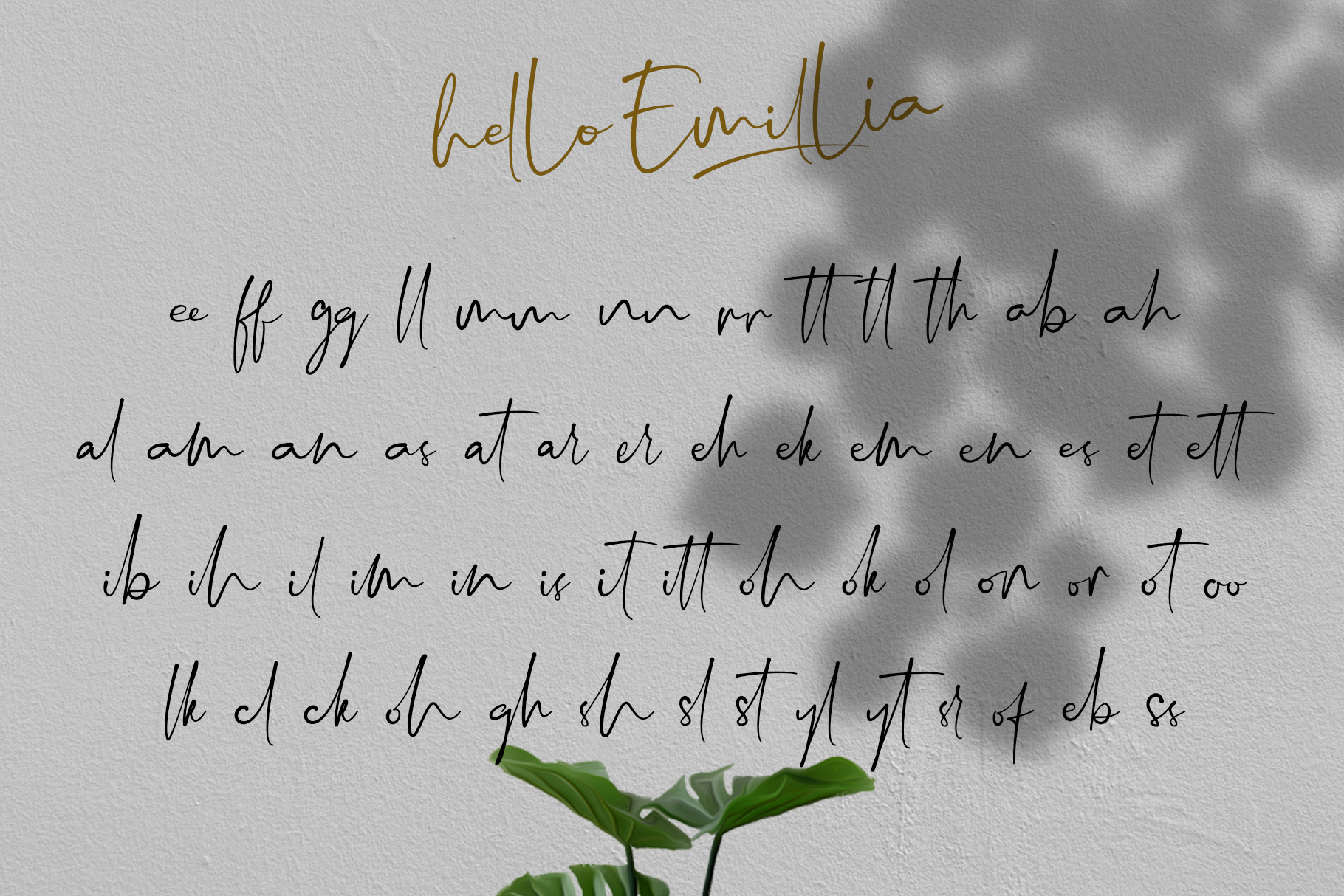 Hello Emillia Script example image 10