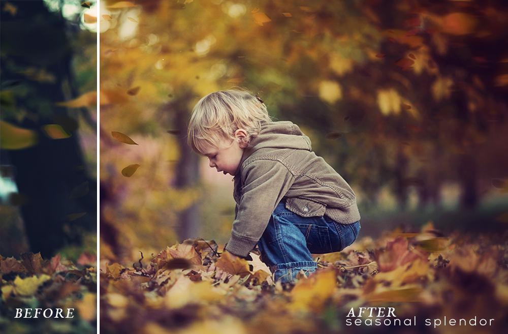 Seasonal Splendor Action Collection example image 10